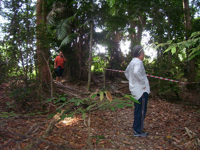 bukit jugra jungle trekking essay