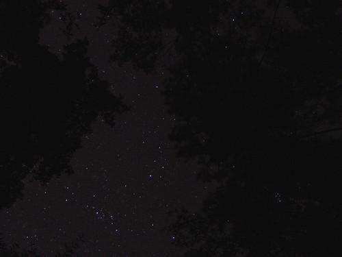 camping trees nature kids night dark georgia stars f828 constellations constellation scouting cubscouts starrynight starlight pack199 burtadams