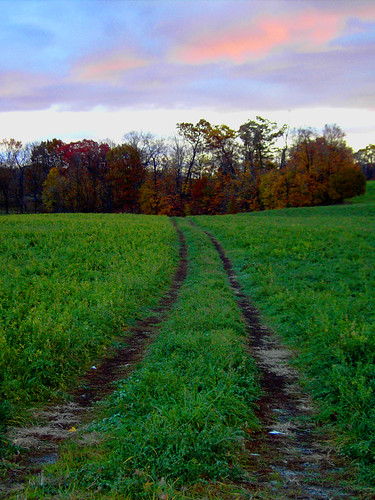 morning sunrise dawn path farm meadow fair clear partlycloudy brookviewfarm projectweathersubmission