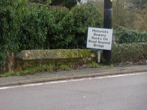 Misleading sign