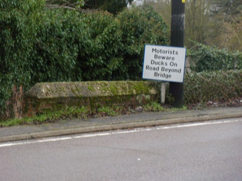Misleading sign There were no ducks over the bridge. Kelvedon circular