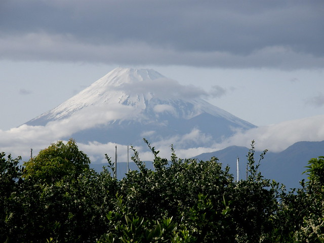 Mt Fuji Restaurant Madisonville Ky Menu