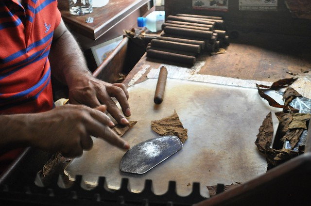 Ramón, a Cigar Roller at La Leyenda del Cigarro Shop, Santo Domingo, Dominican Republic