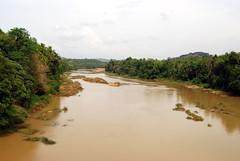 wetland, floodplain, flood, soil, water, river, natural environment, marsh,