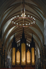 symmetry(1.0), building(1.0), cathedral(1.0), synagogue(1.0), organ pipe(1.0), musical instrument(1.0), place of worship(1.0), church(1.0), chapel(1.0), organ(1.0), pipe organ(1.0),