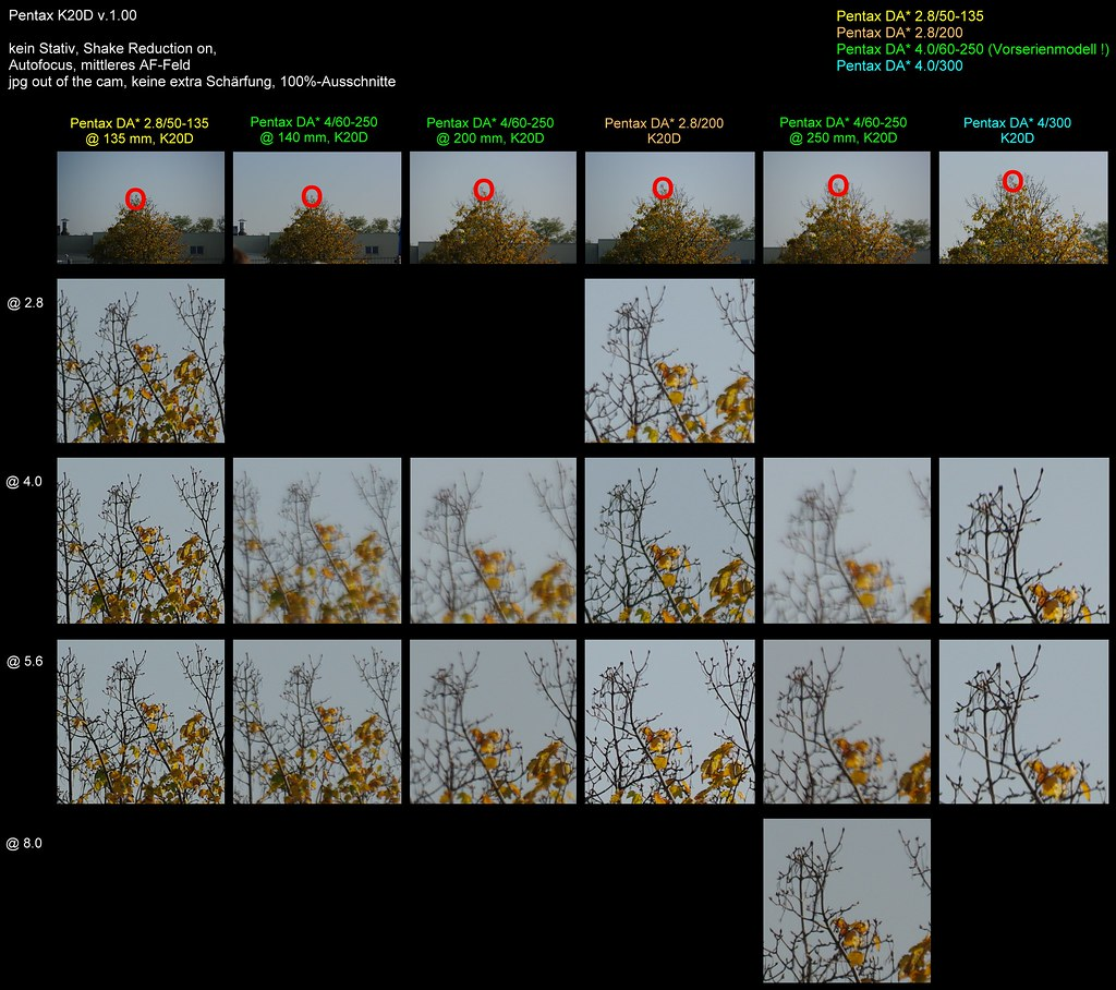 Test4: Pentax DA* 200 vs. 300 vs. 50-135 vs. 60-250 (the 60-250 has been a pre-series model)
