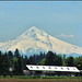 2011-05-20 On a clear day you can see Mt Hood!