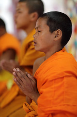 Monks and novices in Laos