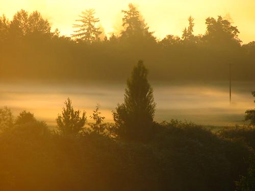 morning sunrise washington everett