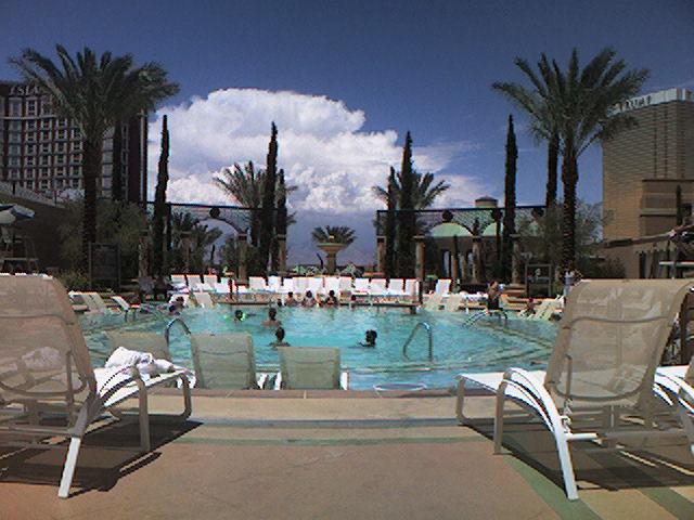 las vegas palazzo pool