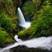 Eagle Creek Wilderness - 2008 by Jesse Estes
