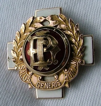 10 Gorgeous Nursing Pins For Graduation - NurseBuff  |Nursing Graduation Pins