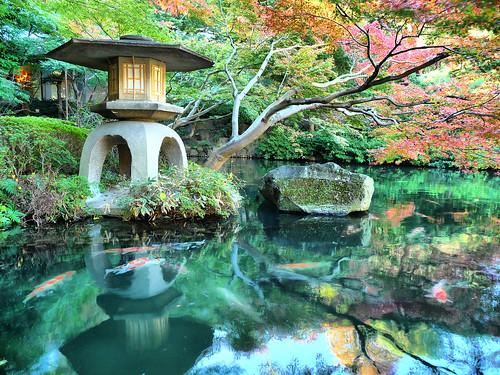 Tokyo japanese garden happo en hdr a photo on for Garden pool tokyo