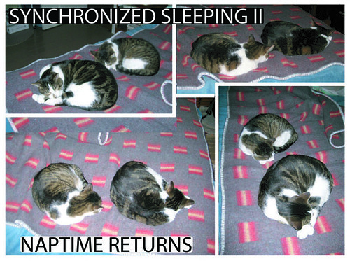 Synchronized sleeping II