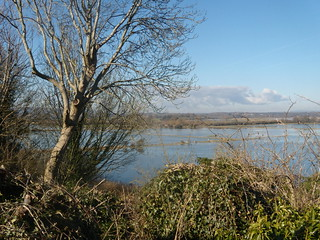 Amberley Wild Brooks - flooded