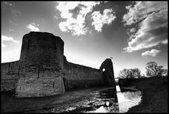 Pevensey Castle B&W