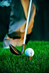 play(0.0), cue stick(0.0), grass(1.0), sports(1.0), recreation(1.0), golf club(1.0), games(1.0), green(1.0), golf(1.0), golf equipment(1.0), ball game(1.0), lawn(1.0), ball(1.0),