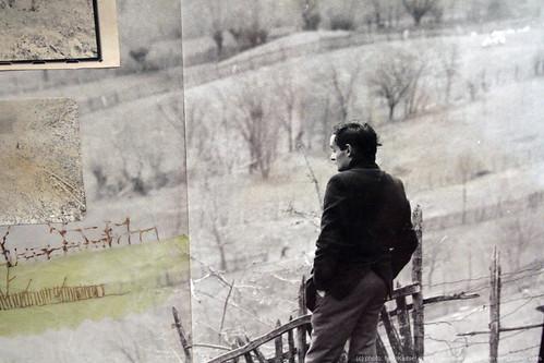 documenta 12 | Ion Grigorescu  / Traisteni | 1976 | Aue-Pavillon