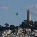 Fat Albert, Coit Tower by jefffielding