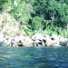 Autumn in Yelapa