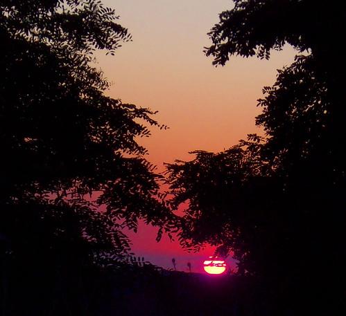 sunset dax kensingtonmetropark flickrsbest michigansunset aplusphoto naturessilhouette senicmichigan dblringexcellence tplringexcellence artistoftheyearlevel3