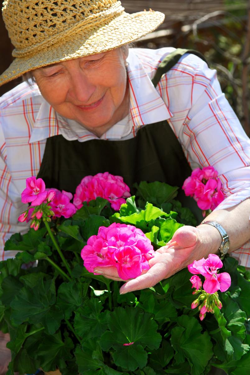 Senior woman gardening la couleur de nous