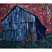 Barn, Cheboygan County, 1987