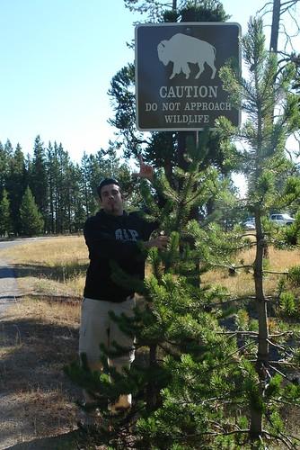 Cartel de precaución en el Parque Nacional Yellowstone parque nacional yellowstone - 2513493825 198a46c10f - Parque Nacional Yellowstone, cómo visitarlo en dos días