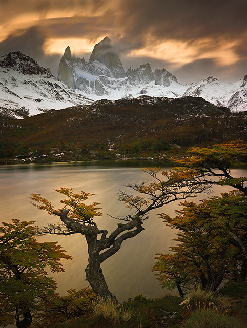 Autumn in Patagonia by Michael Anderson