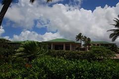 Kauai 336