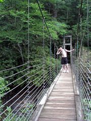 rolling stock(0.0), woodland(1.0), rainforest(1.0), suspension bridge(1.0), canopy walkway(1.0), forest(1.0), rope bridge(1.0), jungle(1.0), bridge(1.0),