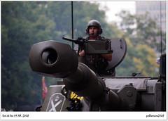 Día de las Fuerzas Armadas 2008