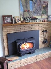 floor(1.0), wood(1.0), room(1.0), wood-burning stove(1.0), fireplace(1.0), living room(1.0), hardwood(1.0), hearth(1.0),