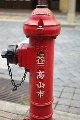 machine(0.0), fire extinguisher(0.0), pink(0.0), lighting(0.0), red(1.0), fire hydrant(1.0),