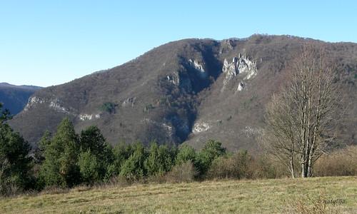 nature slovenia natalija narava kozice npisec
