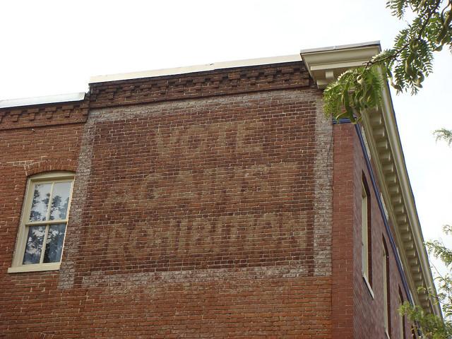 Vote Against Prohibition