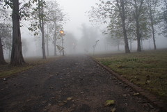 Fog comes to Islamabad