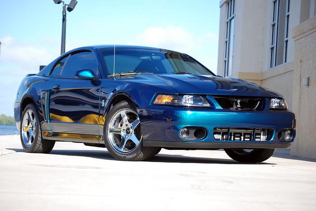 2004 Mystic Cobra Mustang Flickr Photo Sharing