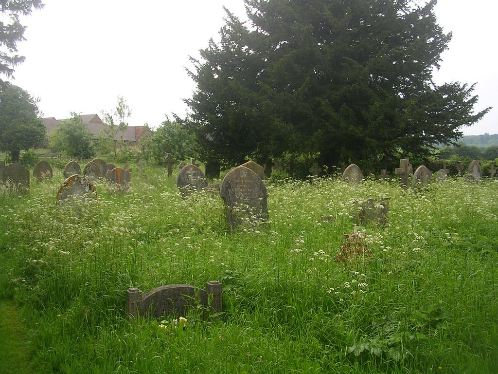 Churchyard Albury Tring Circular