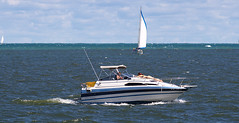 sail, sailboat, sailing, sailboat racing, yacht, vehicle, sailing, sea, boating, watercraft, dinghy sailing, boat,