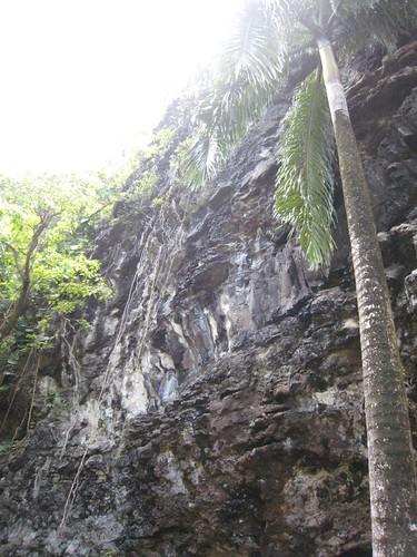 kauai IMG_5624