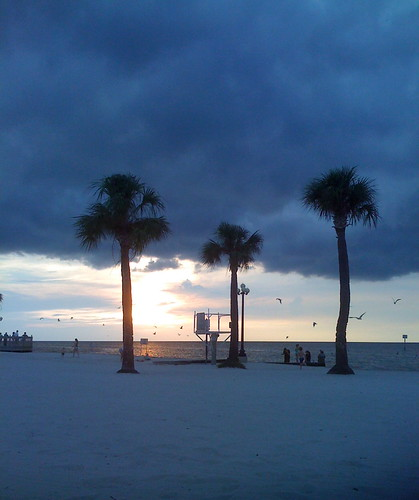ocean trees sunset beach gulfofmexico water pine clouds island sand florida palm