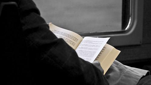 Reader in train