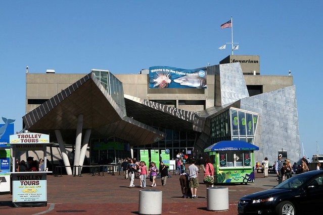 The Boston Aquarium Flickr Photo Sharing