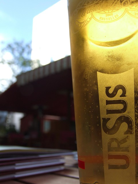My first pint of Ursus (Romania's most common beer)