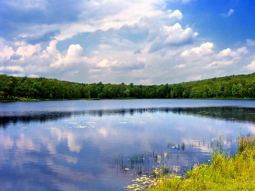 paisagem Delaware EUA