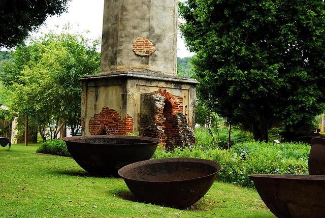Jardin botanico y cultural caguas calderos puerto for Bodas jardin botanico caguas
