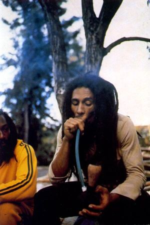 BOB MARLEY SMOKING A COCONUT CHALICE PIPE | Explore BOBO ...
