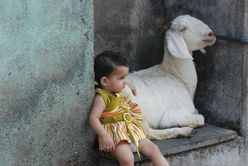 Marziya Shakir and Goat by firoze shakir photographerno1
