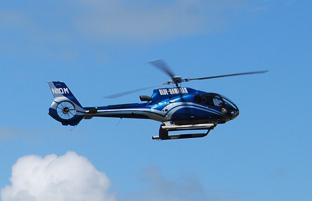 blue hawaii helicopters with 3065891673 on Helicopter Tours further 3065891673 further Seal Manages Escape Great White Shark Balancing Beasts Nose Coast South Africa furthermore Index in addition Big Island Hawaii Hiking Adventure Landscapes Beaches Lava Fields.